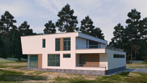 Дом Н вариант 1 (2)